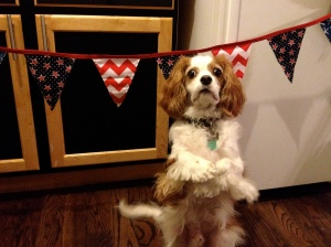4th of July side of reversible bunting | Janeylulu